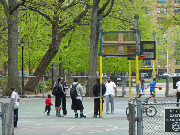 Harlem12