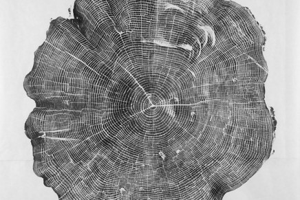 Bryan Nash Gill – Woodcuts