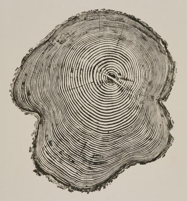 Bryan Nash Gill - Woodcuts