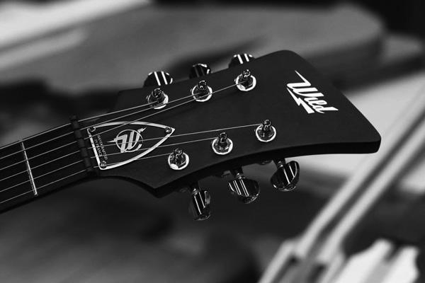 Wild Customs Guitar
