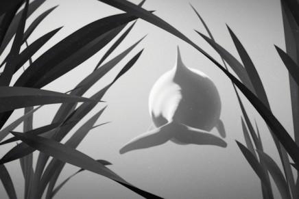 The last Memory, un film d'animation 3D pour sauver les marsouins de la mer Baltique