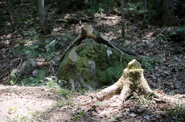 les Jardins du Précambrien  Val-David