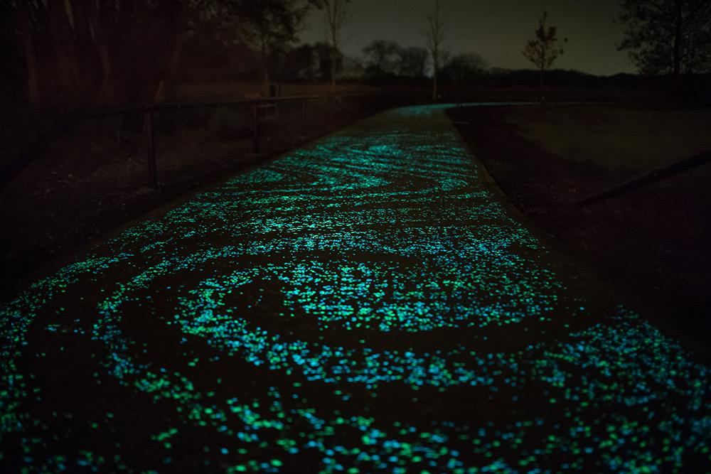 Van Gogh Bicycle Path