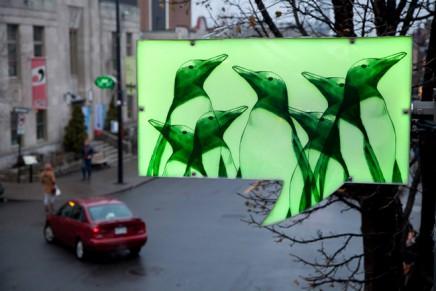 Idée-O-rama, des bulles lumineuses