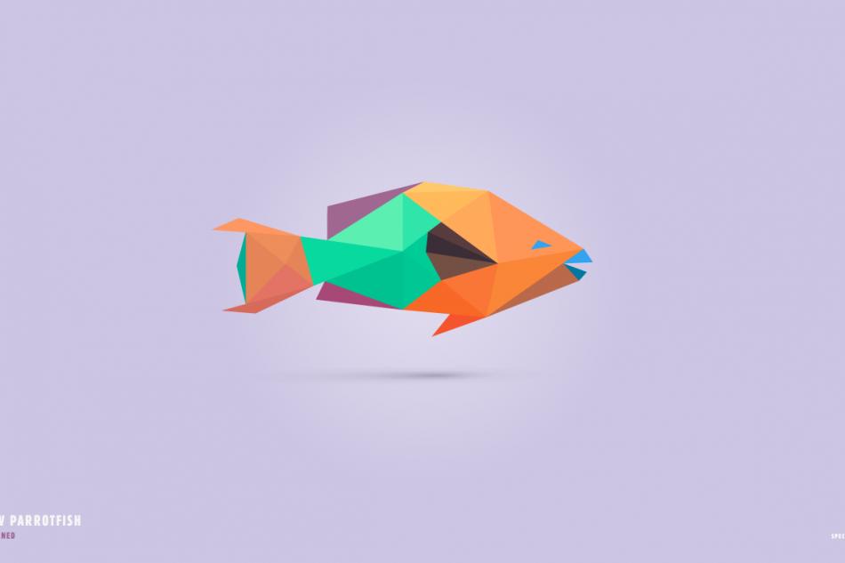In pieces parrotfish