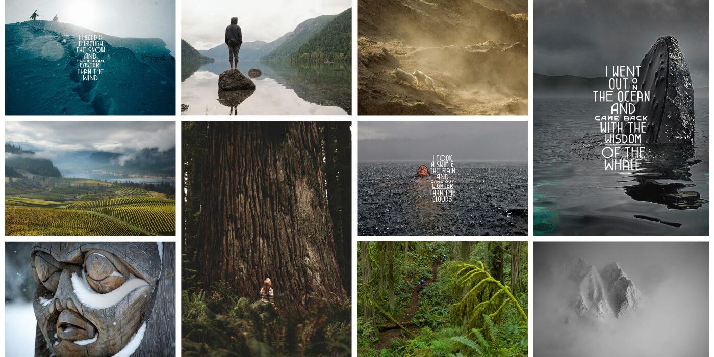 Super, Natural British Columbia Branding Ethos Montreal