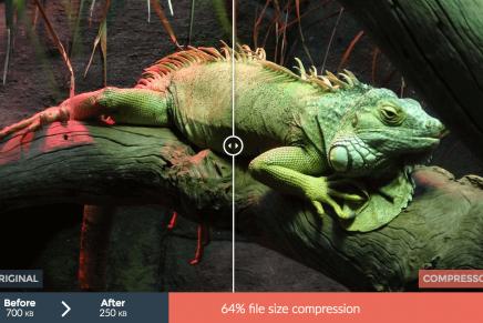5 outils pour optimiser et compresser ses images pour le web
