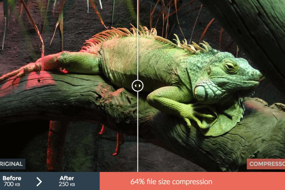 Optimiser une image pour le web